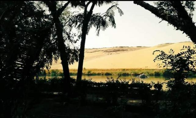 Mostafa Shaker